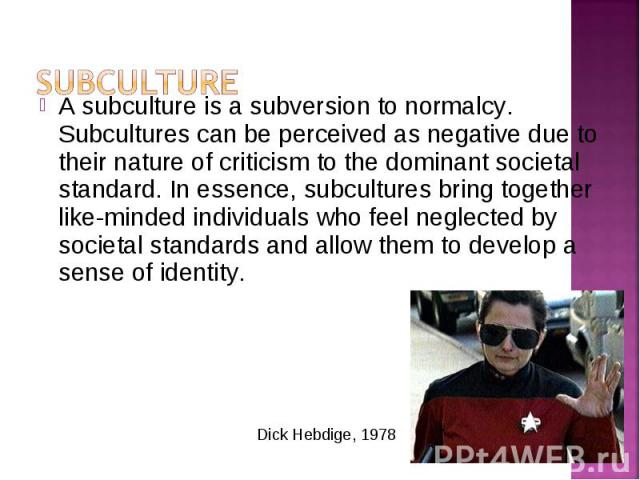 A subculture is a subversion to normalcy. Subcultures can be perceived as negative due to their nature of criticism to the dominant societal standard. In essence, subcultures bring together like-minded individuals who feel neglected by societal stan…