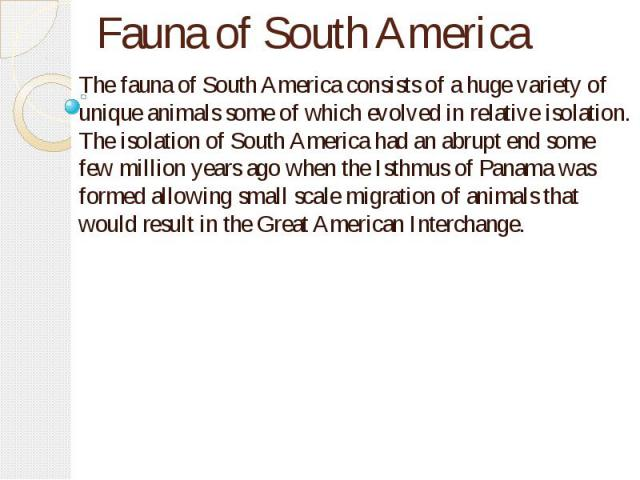 Fauna of South America The fauna of South America consists of a huge variety of unique animals some of which evolved in relative isolation. The isolation of South America had an abrupt end some few million years ago when the Isthmus of Panama was fo…