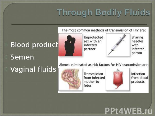 Blood products Blood products Semen Vaginal fluids