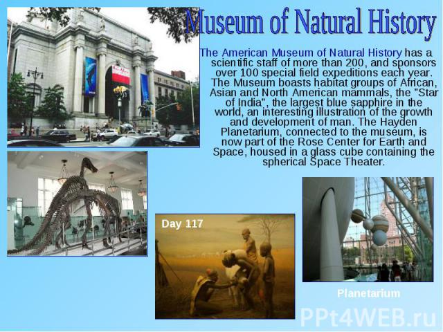 """The American Museum of Natural History has a scientific staff of more than 200, and sponsors over 100 special field expeditions each year. The Museum boasts habitat groups of African, Asian and North American mammals, the """"Star of India"""", …"""