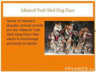 Iditarod Trail Sled Dog Race Some of Alaska's popular annual events are the Idit