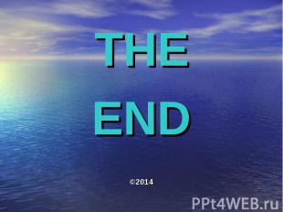 THE THE END ©2014