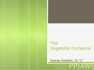 "The Vegetable Orchestra Roman Kotenko, 10 ""C"""