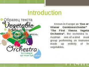 "Introduction Known in Europe as ""Das erste Wiener Gemüseorchester"" or ""The First"