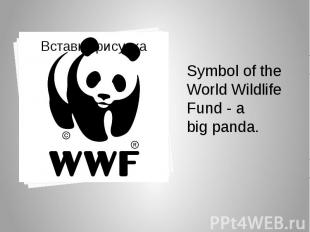 Symbol of the World Wildlife Fund - a big panda. Symbol of&n