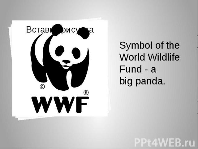 Symbol of the World Wildlife Fund - a big panda. Symbol of the World Wildlife Fund - a big panda.