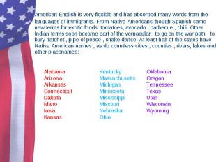 American English is very flexible and has absorbed many words from the languages