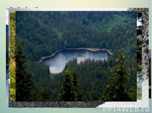 3.Lake Synevyr The picturesque corner of Ukrainian Carpathians lake locate