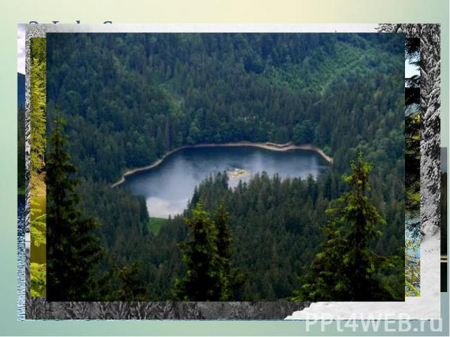 3.Lake Synevyr The picturesque corner of Ukrainian Carpathians lake located at an altitude of nearly a thousand meters, has an interesting legend about the origin of its name.