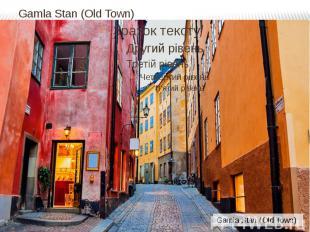 Gamla Stan (Old Town)
