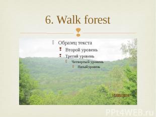 6. Walk forest
