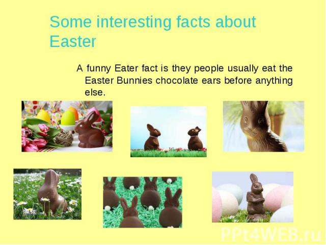 Some interesting facts about Easter A funny Eater fact is they people usually eat the Easter Bunnies chocolate ears before anything else.