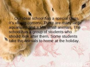 Our ideal school has a special class. It's «living corner». There are many large