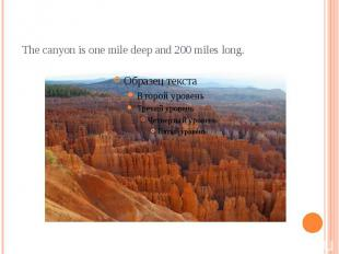 The canyon is one mile deep and 200 miles long.