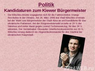 Politik Kandidaturen zum Kiewer Bürgermeister Die Klitschko-Brüder engagierten s