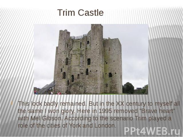 """Trim Castle This lock badly remained. But in the XX century to myself all the same I won glory. Here in 1995 removed """"Brave heart"""" with Mel Gibson. According to the scenario Trim played a role of the cities of York and London."""