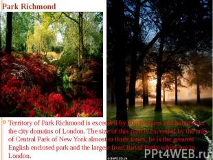 Park Richmond Territory of Park Richmond is exceeded by 900 hectares and behaves