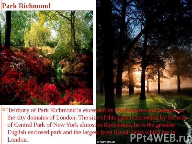 Park Richmond Territory of Park Richmond is exceeded by 900 hectares and behaves to the city domains of London. The size of this park is exceeded by the area of Central Park of New York almost in three times, he is the greatest English enclosed park…
