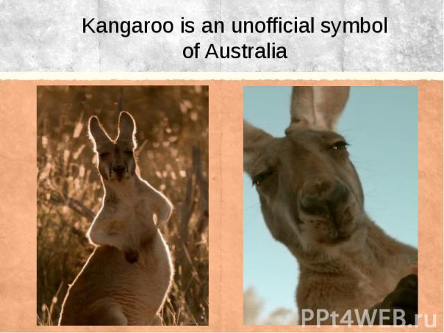 Kangaroo is anunofficial symbol of Australia