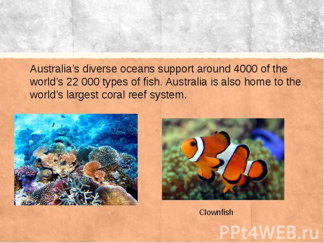 Australia's diverse oceans support around 4000 of the world's 22 000 types of fish. Australia is also home to the world's largest coral reef system.