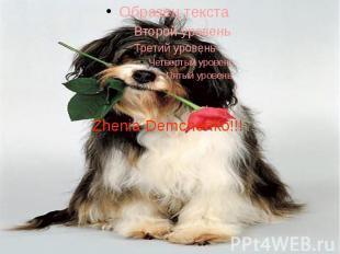 Zhenia Demchenko!!!