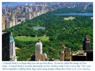 • Central Park is so huge that you can get lost there. It can be called the lung