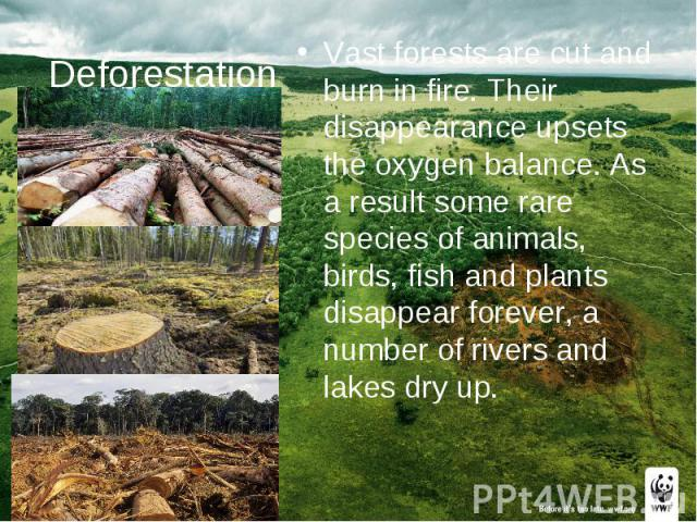 Deforestation Vast forests are cut and burn in fire. Their disappearance upsets the oxygen balance. As a result some rare species of animals, birds, fish and plants disappear forever, a number of rivers and lakes dry up.