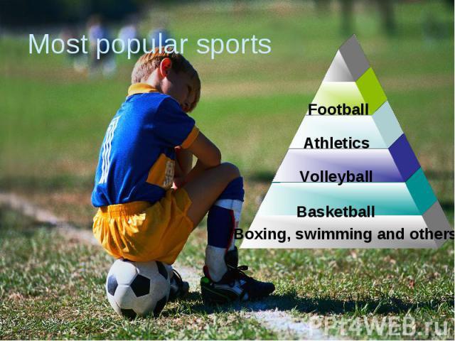 Most popular sports