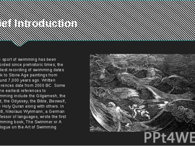 Brief Introduction The sport of swimming has been recorded since prehistoric times; the earliest recording of swimming dates back to Stone Age paintings from around 7,000 years ago. Written references date from 2000 BC. Some of the earliest referenc…