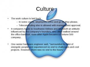 Culture The work culture is laid back. - In some cases, employees come and go as