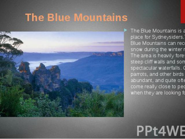 The Blue Mountains The Blue Mountains is a popular place for Sydneysiders.The Blue Mountains can receive snow during the winter months. The area is heavily forested with steep cliff walls and some spectacular waterfalls. Colourful parrots, and other…
