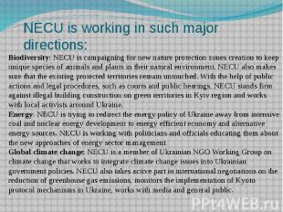 NECU is working in such major directions: