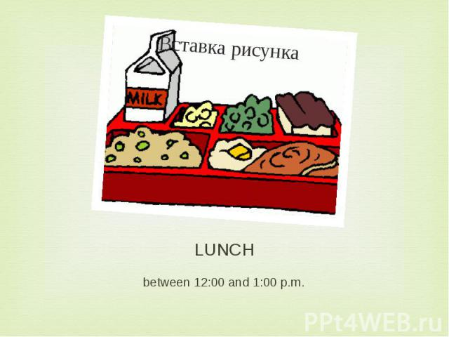 LUNCH between 12:00 and 1:00 p.m.