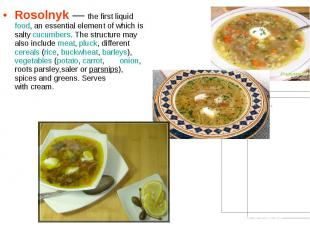Rosolnyk— the first liquidfood, an essential element of which is sal