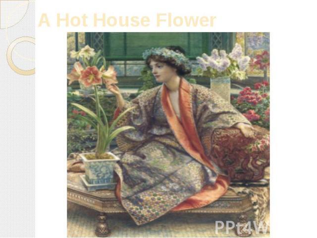 A Hot House Flower