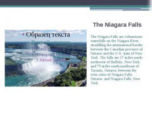 The Niagara Falls The Niagara Falls are voluminous waterfalls on the Niagara Riv