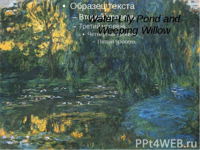 Water-Lily Pond and Weeping Willow