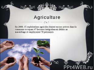 Agriculture En 2000, 15 exploitations agricoles étaient encore actives dans la c