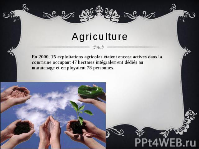 Agriculture En 2000, 15 exploitations agricoles étaient encore actives dans la commune occupant 47 hectares intégralement dédiés au maraîchage et employaient 78 personnes.