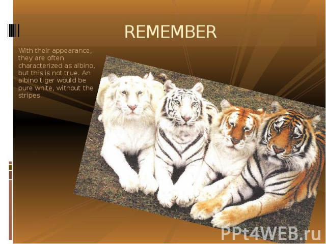 REMEMBER With their appearance, they are often characterized as albino, but this is not true. An albino tiger would be pure white, without the stripes.