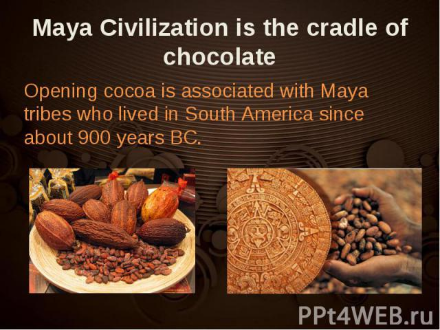 Opening cocoa is associated with Maya tribes who lived in South America since about 900 years BC. Opening cocoa is associated with Maya tribes who lived in South America since about 900 years BC.