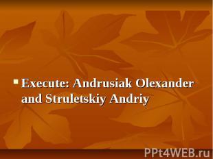 Execute: Andrusiak Olexander and Struletskiy Andriy Execute: Andrusiak Olexander