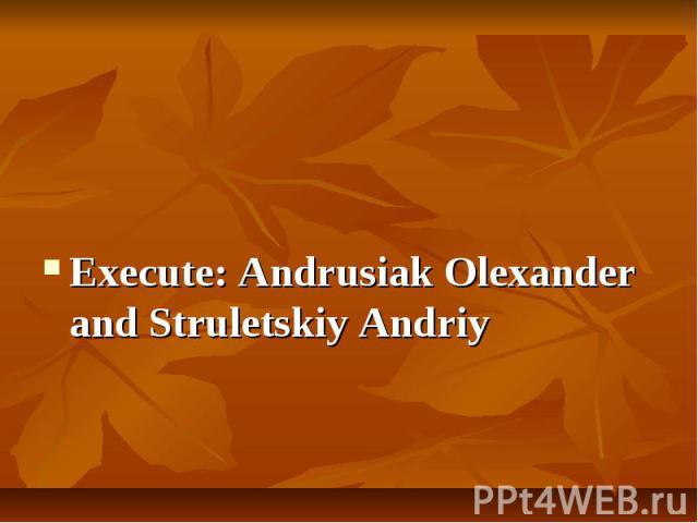Execute: Andrusiak Olexander and Struletskiy Andriy Execute: Andrusiak Olexander and Struletskiy Andriy