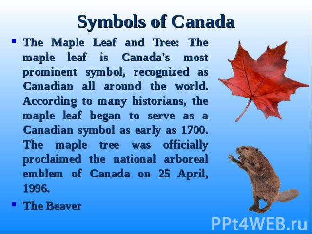 The Maple Leaf and Tree: The maple leaf is Canada's most prominent symbol, recognized as Canadian all around the world. According to many historians, the maple leaf began to serve as a Canadian symbol as early as 1700. The maple tree was officially …
