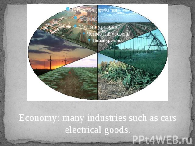 Economy: many industries such as cars electrical goods.