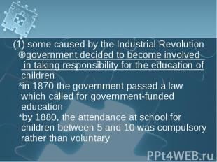 (1) some caused by the Industrial Revolution (1) some caused by the Industrial R