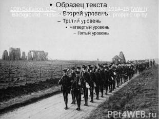 10th Battalion, CEF marches past, winter 1914–15 (WW I); Background: Preser