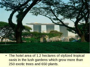 The hotel area of 1.2 hectares of stylized tropical oasis in the lush gardens wh