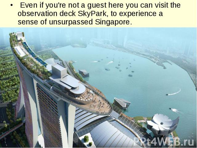 Even if you're not a guest here you can visit the observation deck SkyPark, to experience a sense of unsurpassed Singapore.