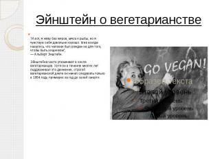 """Эйнштейн о вегетарианстве """"И вот, я живу без жиров, мяса и рыбы, но я чувст"""